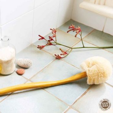 Eco Max Back Brush with Long Handle