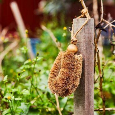 Gardener's Brush 2